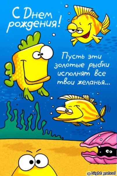 Открытка с днем рождения для рыбы, мириться смешные картинки